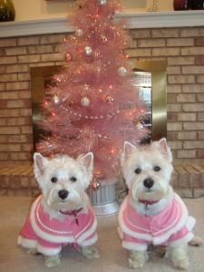 Lola and Savannah