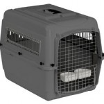 Approved Travel Kennel