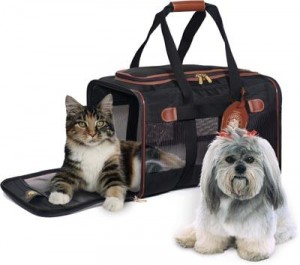 dog-cat-travel1-300x265