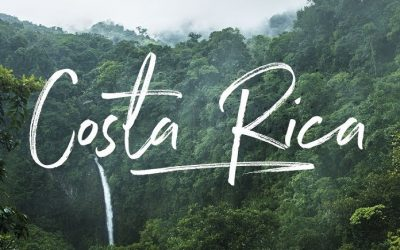 Moving Pets to Costa Rica? What You Need to Know…